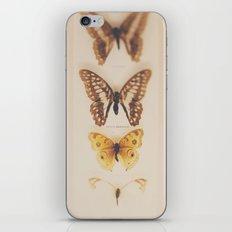 change ...  iPhone & iPod Skin