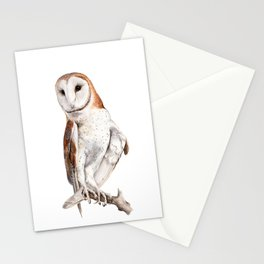 Barn Owl Watercolor Stationery Cards
