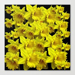 YELLOW SPRING KING ALFRED DAFFODILS ON BLACK Canvas Print
