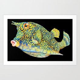 Cowfish Art Print