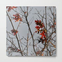 Fall Leaves in a Stormy Sky Metal Print