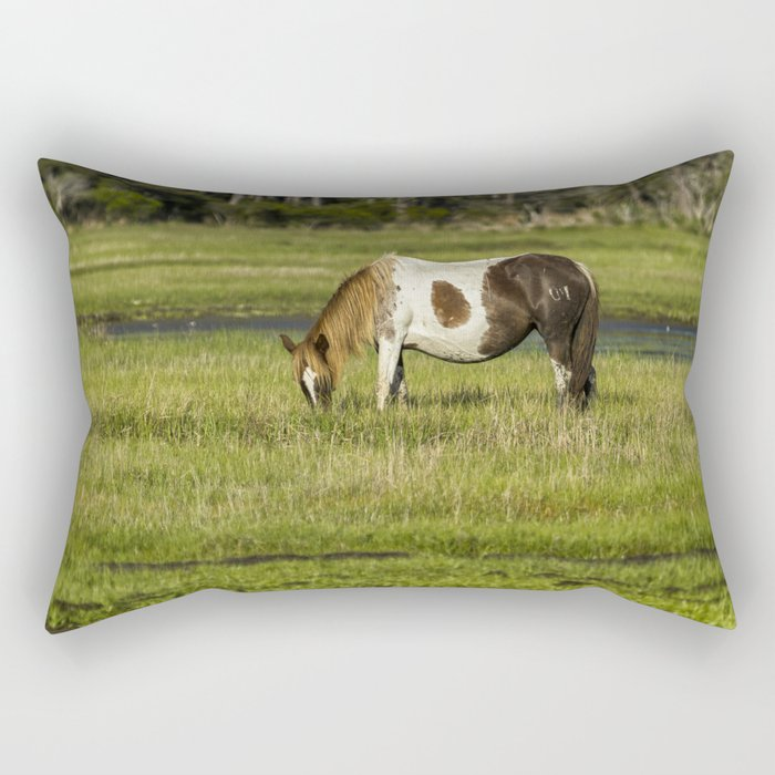 Pinto Mare with the Copper Colored Mane No. 1 - Chincoteague Ponies Assateague Horses Rectangular Pillow