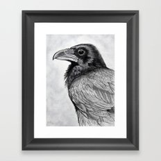 Corvus Corax (The Common Raven) Framed Art Print