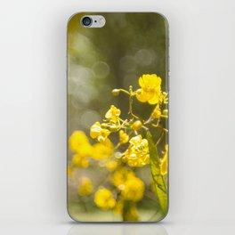 Popcorn Flower Bokeh Delight iPhone Skin