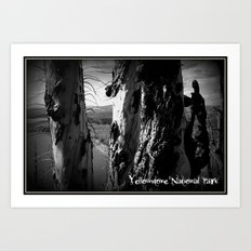 Rebirth in Yellowstone Art Print