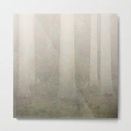 white poplars in the mist Metal Print