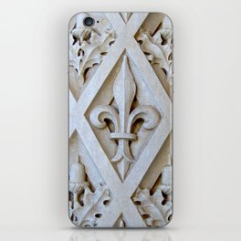 Vanderbilt Column iPhone Skin