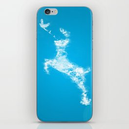 In Search Of Peace iPhone Skin