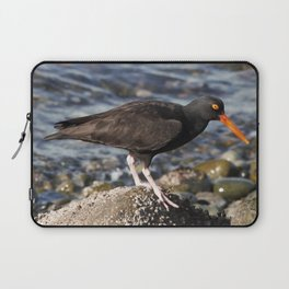 Black Oystercatcher at the Beach Laptop Sleeve