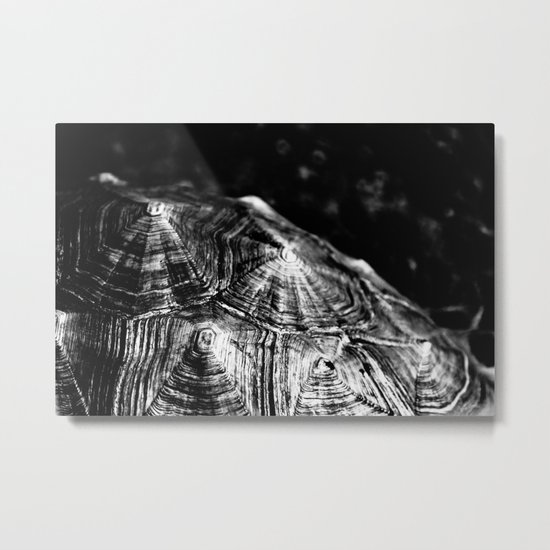Your pain is the breaking of the shell that encloses your understanding~Khalil Gibran Metal Print