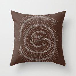 Spiral Terracotta Throw Pillow