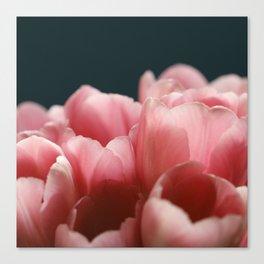 Tulips On Blue Canvas Print