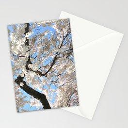 Cherry Blossom Skies Stationery Cards