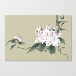 Malus halliana 2 Canvas Print