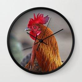 Red Jungle Fowl Wall Clock