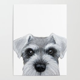 Schnauzer Grey&white, Dog illustration original painting print Poster