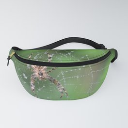 Macro Spider and Spider Web Fanny Pack