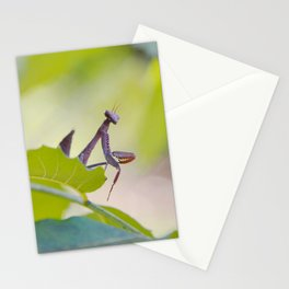 PM #3 Stationery Cards