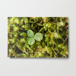Clover Leaf Photography Print Metal Print