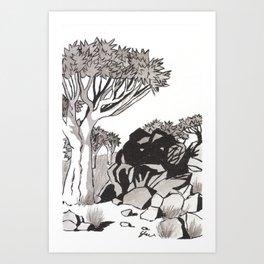 Quiver Tree & Rocks - Namibia Art Print