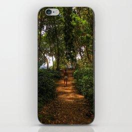 Magic Jungles of Puerto Viejo iPhone Skin