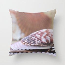 Seashell Collection Still Life Photograph Throw Pillow