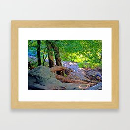 Stone Dragon Framed Art Print
