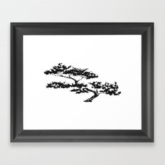 Bonzai Tree on White Background Framed Art Print