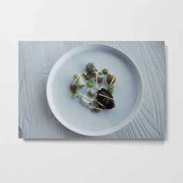 Nautilus, plate Metal Print