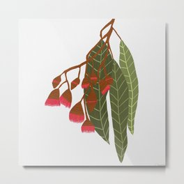 Flowering Gum - White Metal Print
