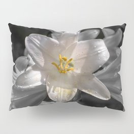 Colourful lily on monochromatic background Pillow Sham