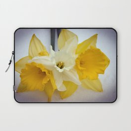 Daffodils resting in the snow after a late London snowstorm in March Laptop Sleeve