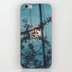 The Moon And The Leaves iPhone & iPod Skin