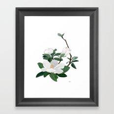Magnolia Flowers Framed Art Print