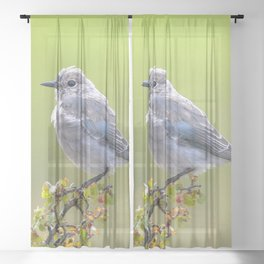 Watercolor Bird Mountain Bluebird 04, Singing the Blues Sheer Curtain