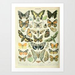 Butterfly, ButterFlies, Papillons - Vintage Map! Art Print