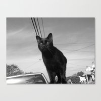 shadow Canvas Prints featuring shadow by Dottie
