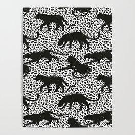 panter leopar jaguar animal print pattern Poster