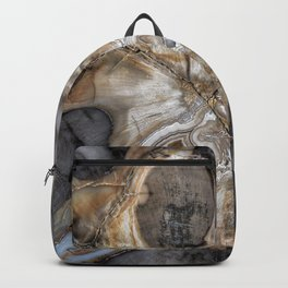 Petrified wood 3264 Backpack