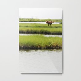 Marsh Horse Metal Print
