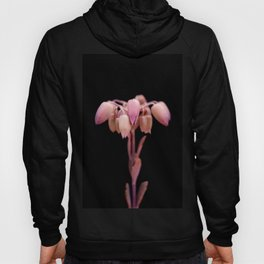 Mother of Thousands Hoody
