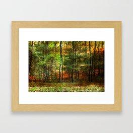 Autumn Sunset - In The Woods Framed Art Print