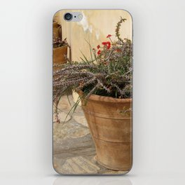 Courtyard Plants iPhone Skin