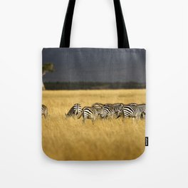 Zebra in Afternoon Light Tote Bag