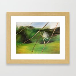 Milkweed Puff Framed Art Print