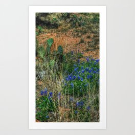Blue Bonnets & Cactus Art Print