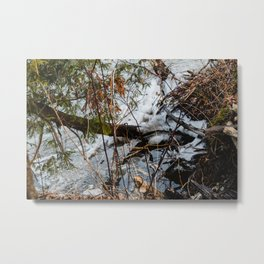 The beach in the winter Metal Print