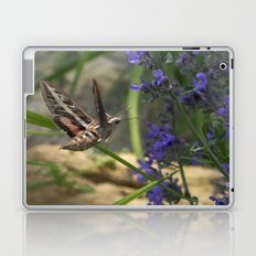 Hummingbird Moth Laptop & iPad Skin