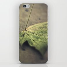 I'm going through changes iPhone & iPod Skin