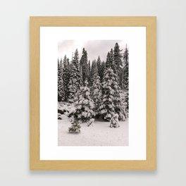 Winter Wonderland - Carol Highsmith Framed Art Print